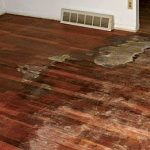 Pet-stained floors can be saved. This floor can be fixed by brushing two-part wo...