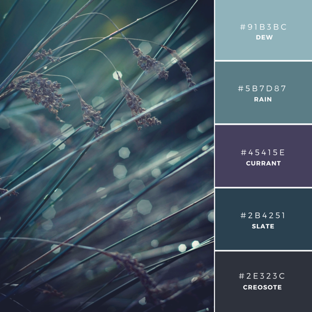 Build your brand: 20 unique and memorable color palettes to inspire you – Learn