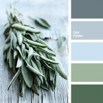 Color Palette #1804