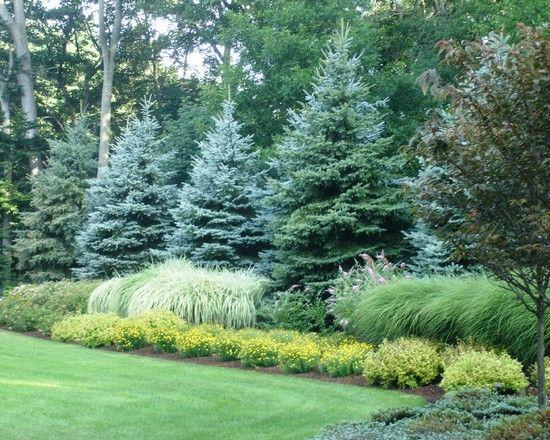 Landscape Boulder +backyard +grass +trees Design, Pictures, Remodel, Decor and I…