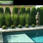 Pool Pampas Grass Design, Pictures, Remodel, Decor and Ideas – Sandy Martin Hudgins - LessBo Ideas