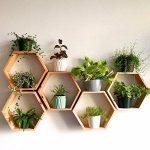 "Set of 6 Medium 5.5"" Deep Hexagon Shelves, Honeycomb Shelves, Floating Shelves, Geometric Shelves"