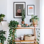 This Is How a Swede Designs a Tiny Brooklyn Apartment